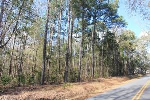 Charleston Residential Investment Tract - Charleston County SC