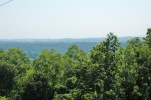 Photo 9 of 16  ·  tn recreational land, timber investment tennessee