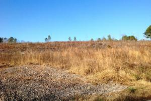 Cedartown Recreational Homesite - Polk County GA