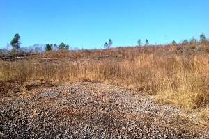 Photo 3 of 6  ·  ga land for sale, georgia hunting land for sale