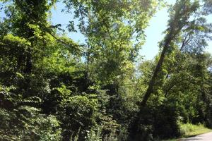 <p>ga land for sale, recreational land for sale ga</p>
