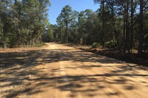 Reidsville Private Wooded Homesite - Tattnall County GA