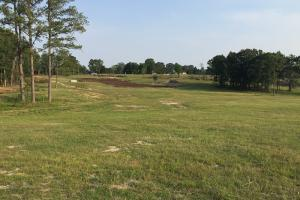 Homesite with Pond - Noxubee County MS