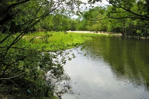 Ocmulgee River Recreational Land
