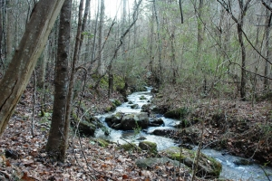 Secluded Private Acreage - Sevier County TN