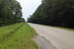 recreational land ga, ga timberland for sale (24 of 25)