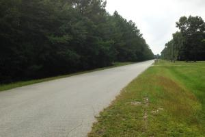 recreational land ga, ga timberland for sale (25 of 25)