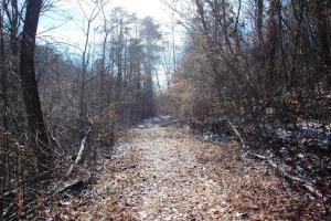 Photo 2 of 6  ·  tn land for sale, mountaintop land for sale, homesite for sale