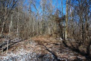 Photo 5 of 6  ·  tn land for sale, mountaintop land for sale, homesite for sale