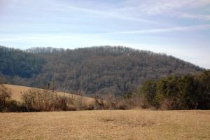 Photo 6 of 6  ·  tn land for sale, mountaintop land for sale, homesite for sale