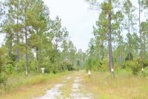 National Forest Recreational Land - Baker County FL