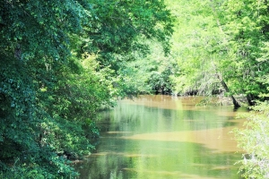 Lynches River Recreational Homesite - Florence County SC