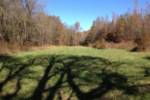 Beaverdam Creek Tract - Chester County SC