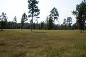 7.5 Acre Hound Hollow Equestrian Land - Kershaw County SC
