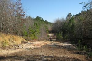 Lexington Executive Estate Homesite - Lexington County SC
