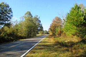 McCormick Recreational Timber Investment - Edgefield County SC