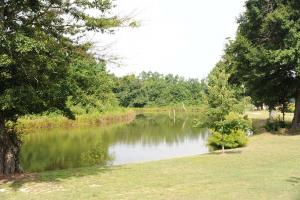 <p>SC recreational land for sale, land for sale south carolina</p>
