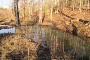 Waterloo Hunting & Timber Investment - Laurens County SC
