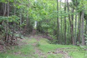 <p>nc mountain land for sale, land for sale nc</p>