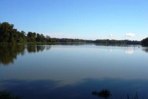Black Warrior Bay Waterfront Lot - Hale County AL