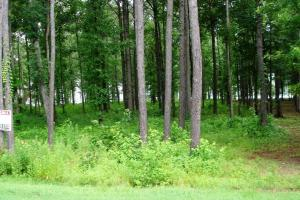 1.02 Acre Recreational Homesite - Hale County AL