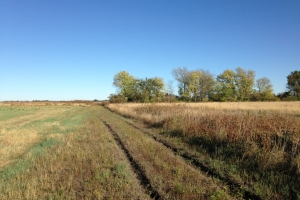 Burt County Waterfowl and Upland Paradise - Burt County NE