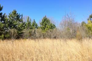Agricultural & Recreational Land - Montgomery County AL