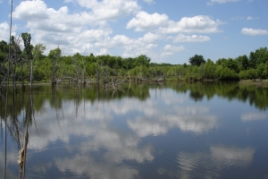 Weekend Hunting & Fishing Retreat - Sumter County AL