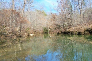2,883 Acre Recreational Timber Investment - Coosa County AL