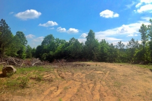Chester Hunting & Timber Tract - Chester County SC