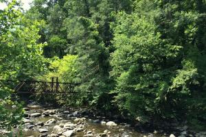 Gatlinburg Development Tract - Sevier County TN