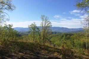 Photo 4 of 8  ·  tn land for sale, mountain land for sale, recreational land for sale