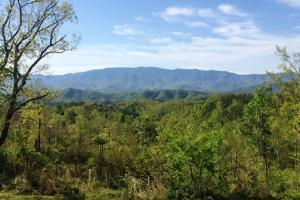 Mountain Farm/Recreational Property - Sevier County TN