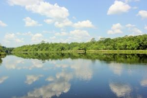 Satilla River Homesite in Woodbine - Camden County GA
