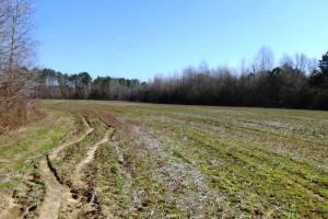 al land for sale, hunting land for sale, farming land for sale (6 of 12)