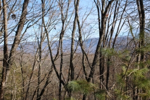 Homesite with Mountain Views - Sevier County TN