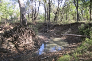 Recreational ROI on Big Cedar Creek - Wilson County KS