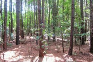 Lexington Residential Homesite  - Lexington County SC