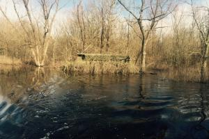 80 Acre Flooded Green Timber Duck Hunting Property - Lonoke County AR