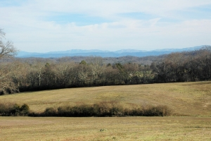 Convenient Friendsville Farm - Loudon County TN