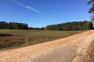 Griffin Recreational & Agricultural Tract - Spalding County GA