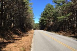 Buchanan Recreation & Timber Investment - Haralson County GA