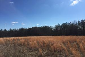 Indian Creek Farm & Recreation - Autauga County AL