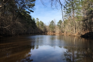 Union Recreational Land with Pond - Union County SC