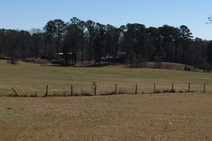 Clanton Executive Homesite or Development - Chilton County AL