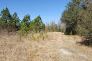 Waterfront Recreational Land - Brunswick County NC