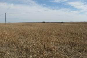 Woodson County Pasture & Oil in Woodson, KS (9 of 9)