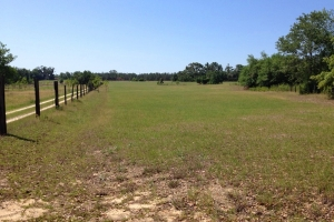 Country Farm Estate - Barnwell County SC
