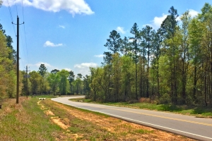 The Grand Bay Wilmer Road Tract - Mobile County AL