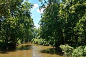 Tombigbee River Tract - Clarke County AL